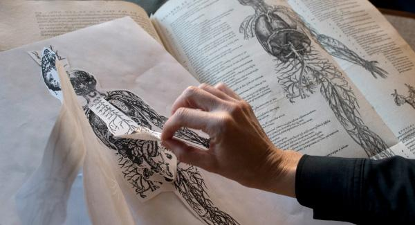 Photo of a hand exploring an old anatomy book