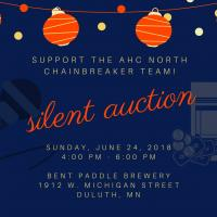 Duluth Silent Auction